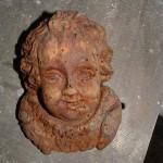 Očiščena glava angelca